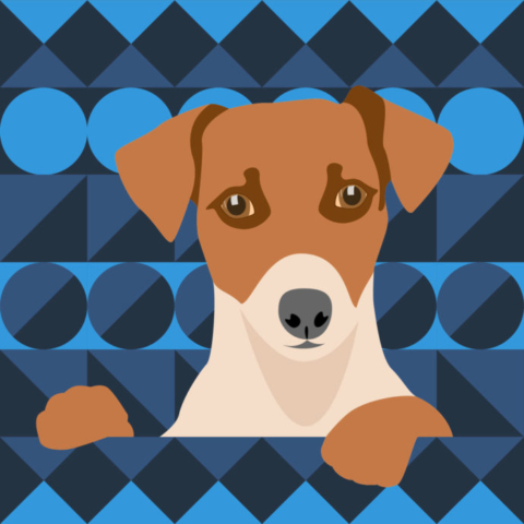 Aztec Dog illustrated by Claire Huntley